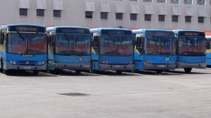 Big blue buses
